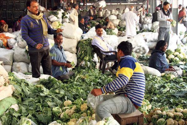 whole-sell-vegitable-marketing