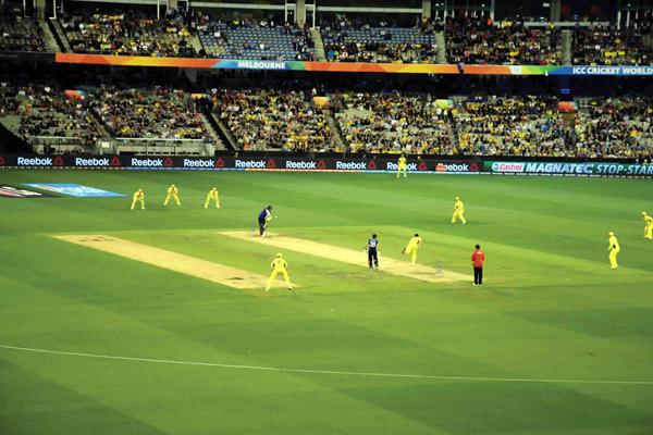 cricket play ground