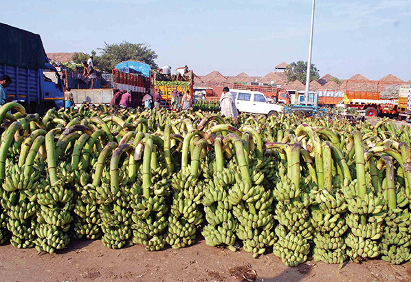 banana-selling-in-big-market